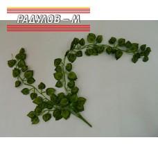 Клони зелени висящи / 4869