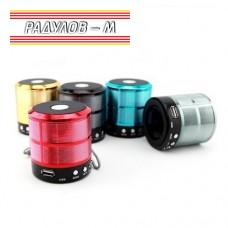 Безжична преносима колонка WS -887 FM / AUX / BLUETOOTH / SD / USB / 2851